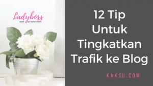 12 Perkara Yang Kak Su Lakukan Untuk Tingkatkan Trafik Blog